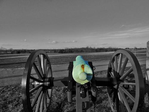Artillery East Cavalry Field