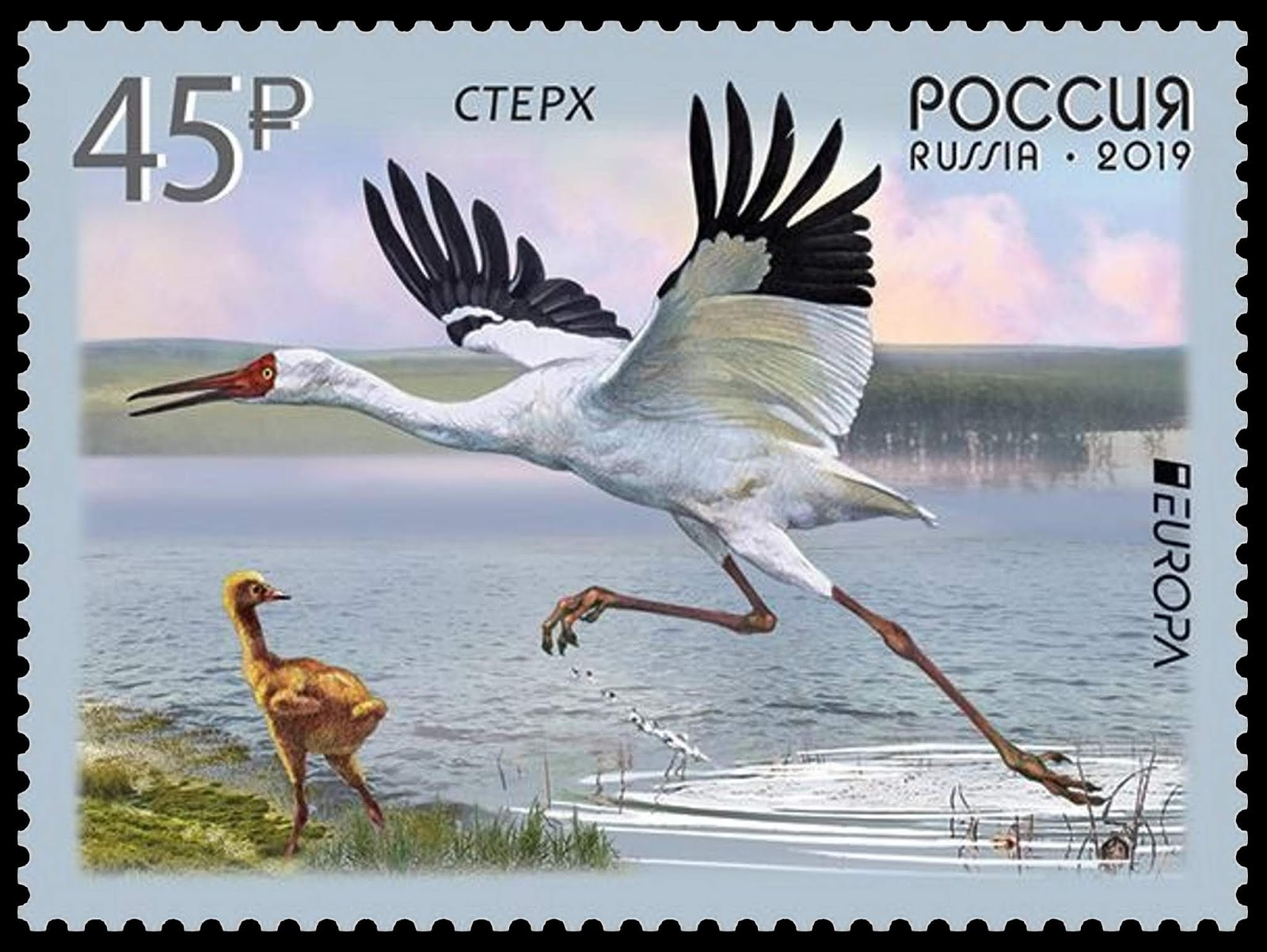 Russia - Europa 2019: National Birds (January 22, 2019)