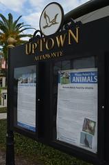 UpTown Altamonte