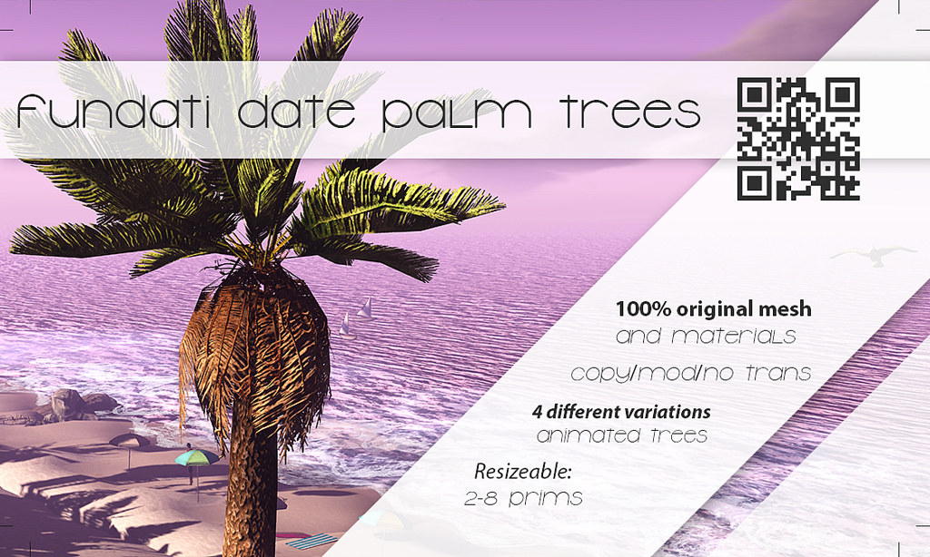 Fundati – Date Palm Trees