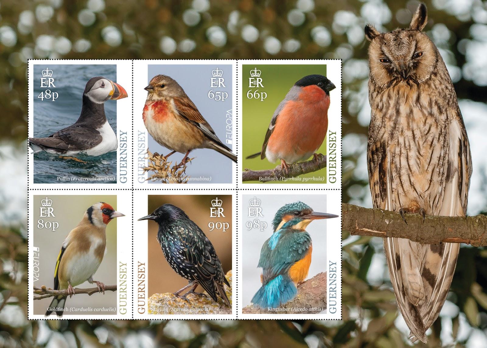 Guernsey - National Birds (April 1, 2019) sheet of 6