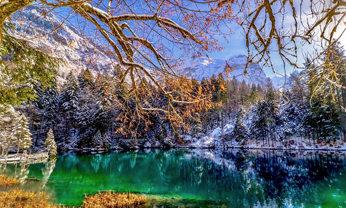 Winter day at the lake