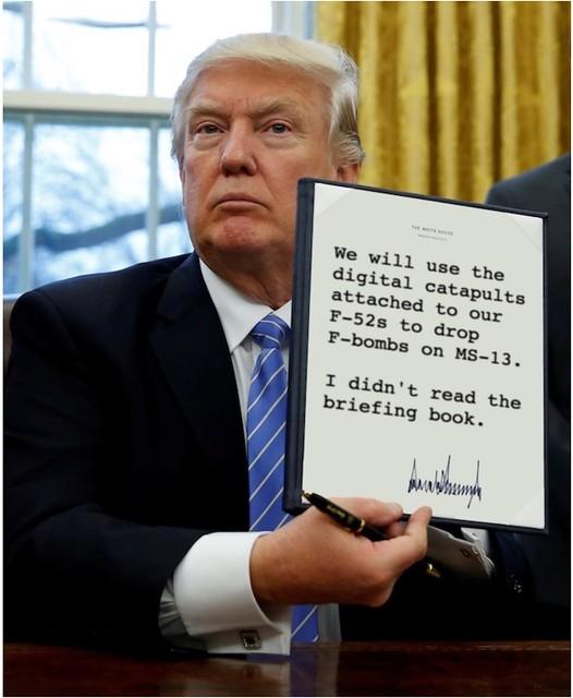 Trump_droppingfbombs