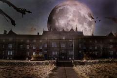 Lunar Imagination