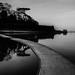 walking on water... by Jess Feldon