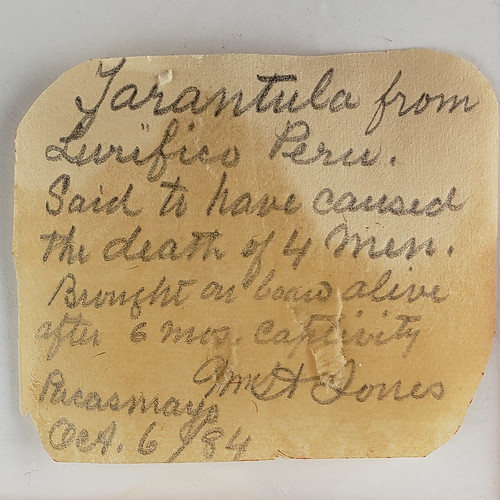 small paper label that reads, in part,