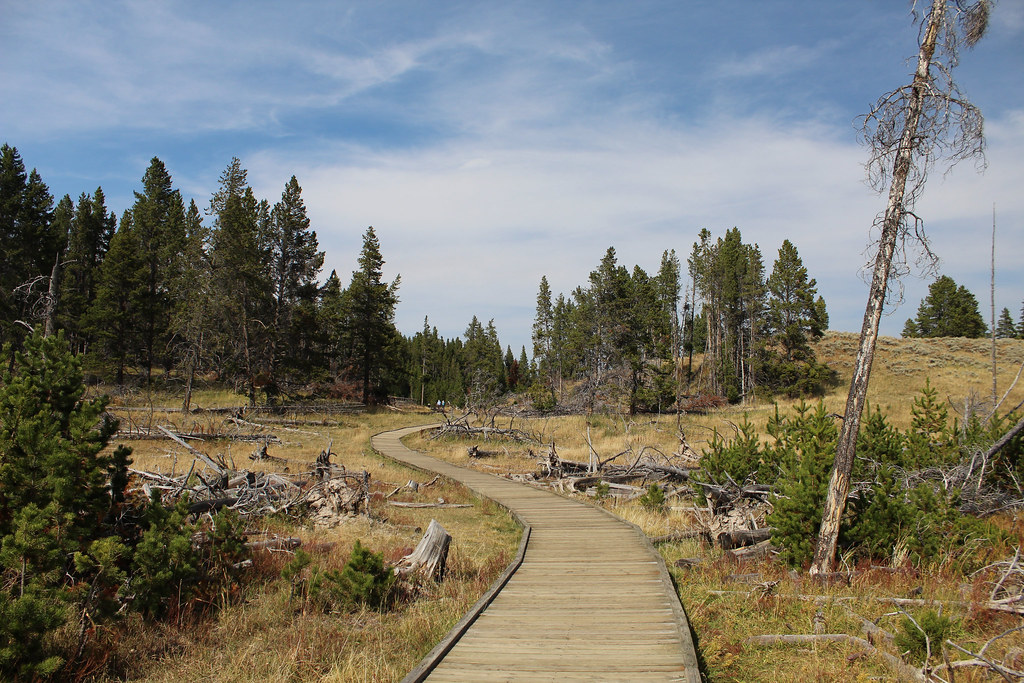 Boardwalk, Yellowstone National Park. Copyright 2018 Jonny Eberle.
