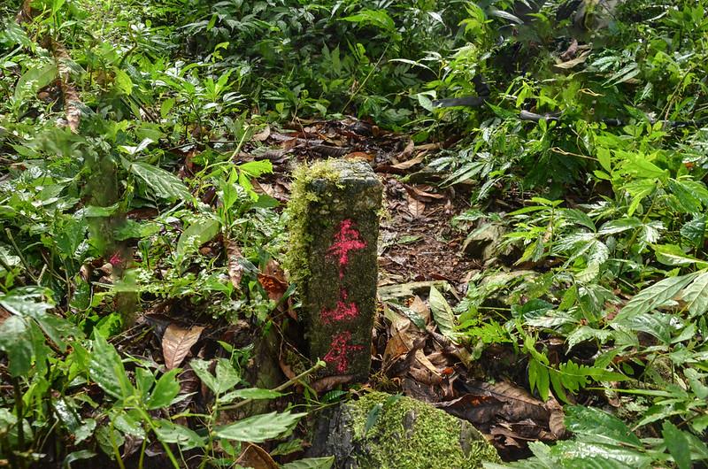 """大南山東南峰民政廳訂""""平山界""""水泥柱(Elev. 1037 m) (1)"""