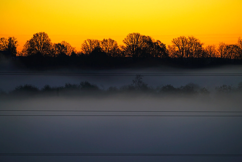 Fog & wires at sunrise, Mozhaysk, Russia
