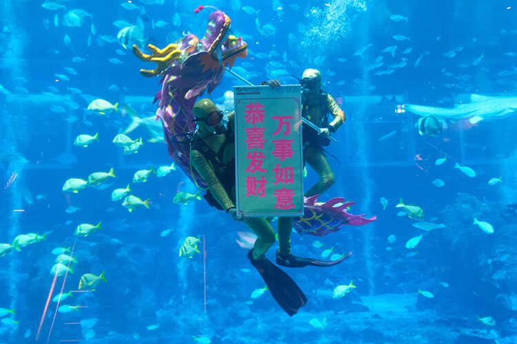 Underwater Dragon Dance Performance