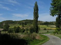 20080916 38228 1017 Jakobus Weg Hügel Wald Baum Weite - Photo of Pern