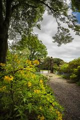 Corsock House Garden