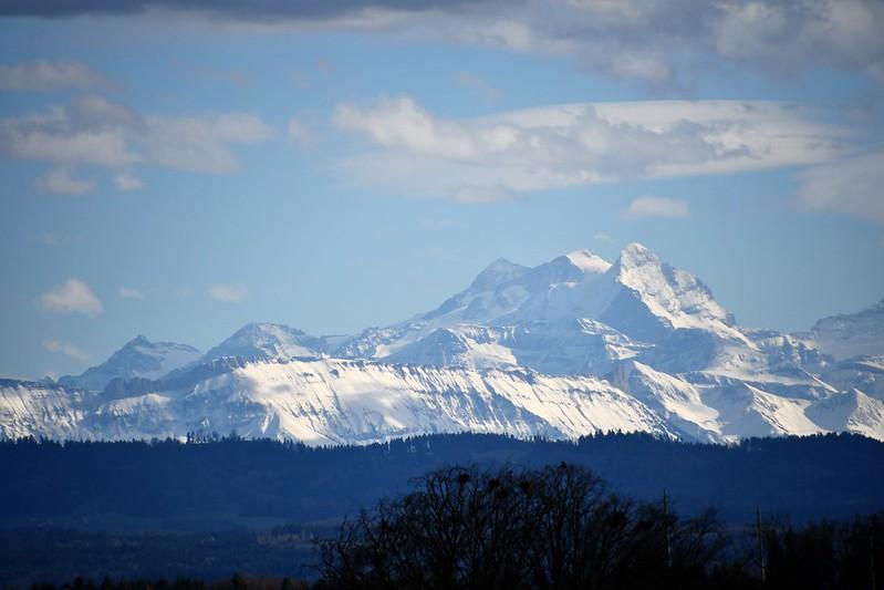 Alps 05.03 (8)