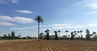 Ismailia-02