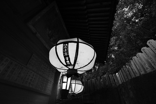 25-02-2019 Nara on morning (29)