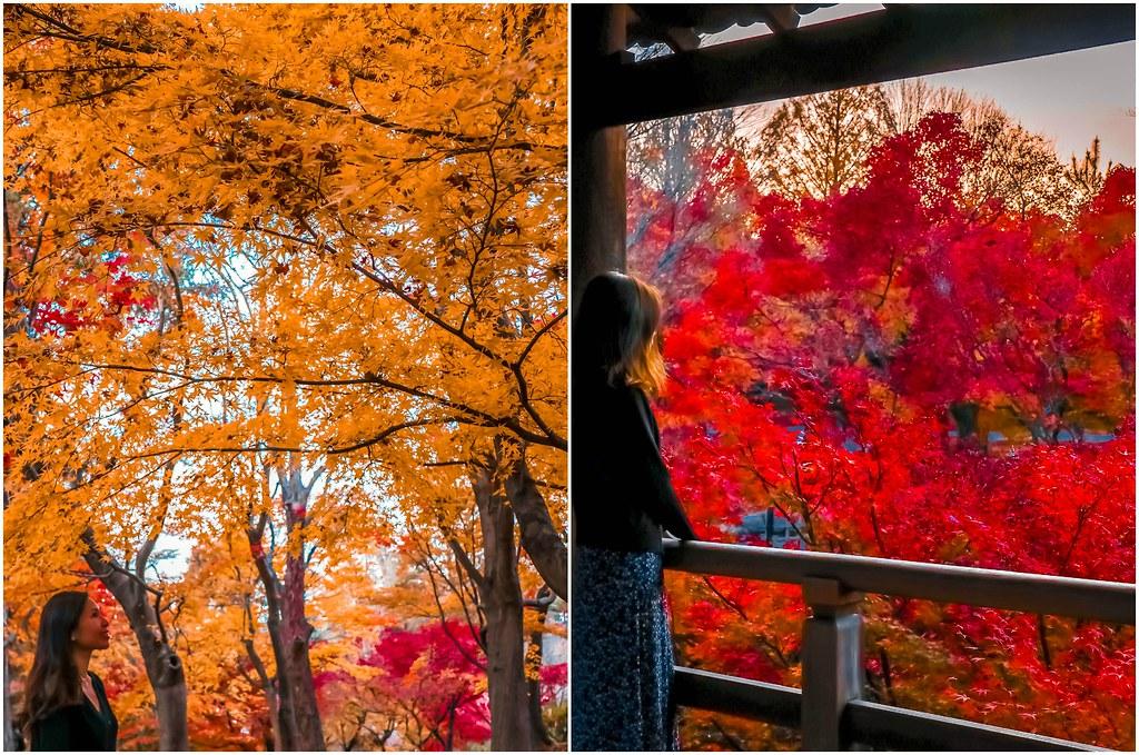 kyoto-tofukuji-temple-alexisjetsets