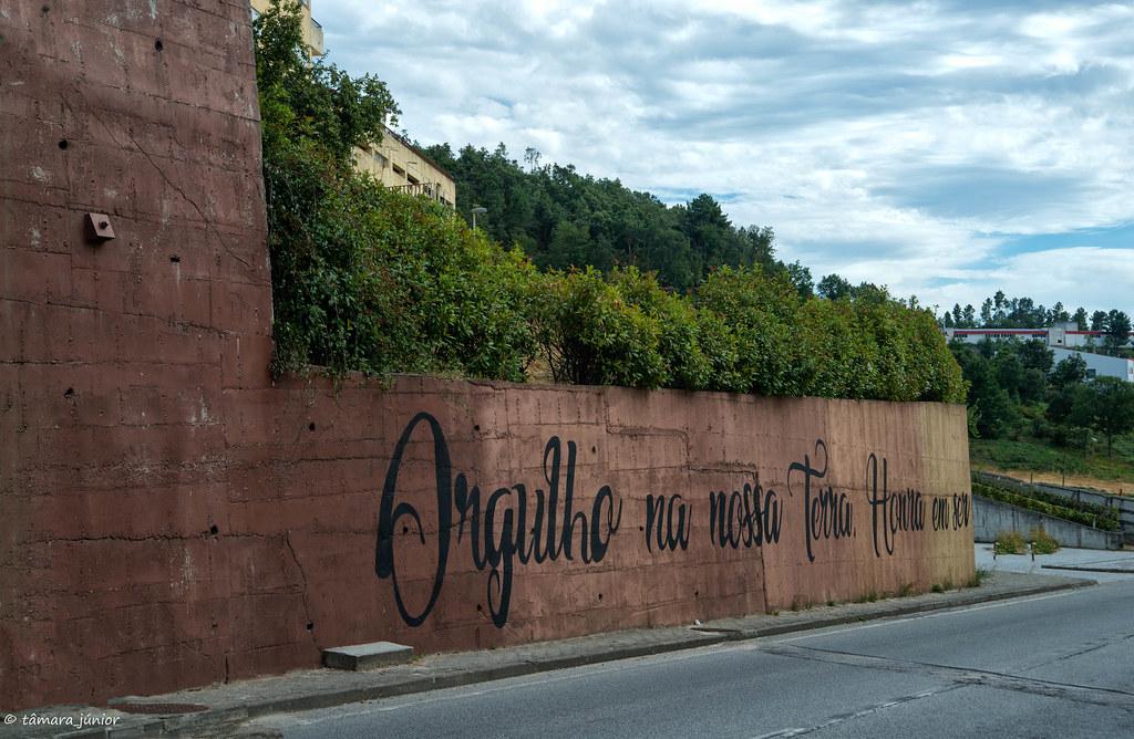 2018.- Vila Pouca de Aguiar (I) (584)