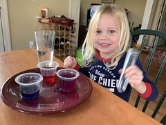 Daddy's little chemist on Christmas as we make colored crystals