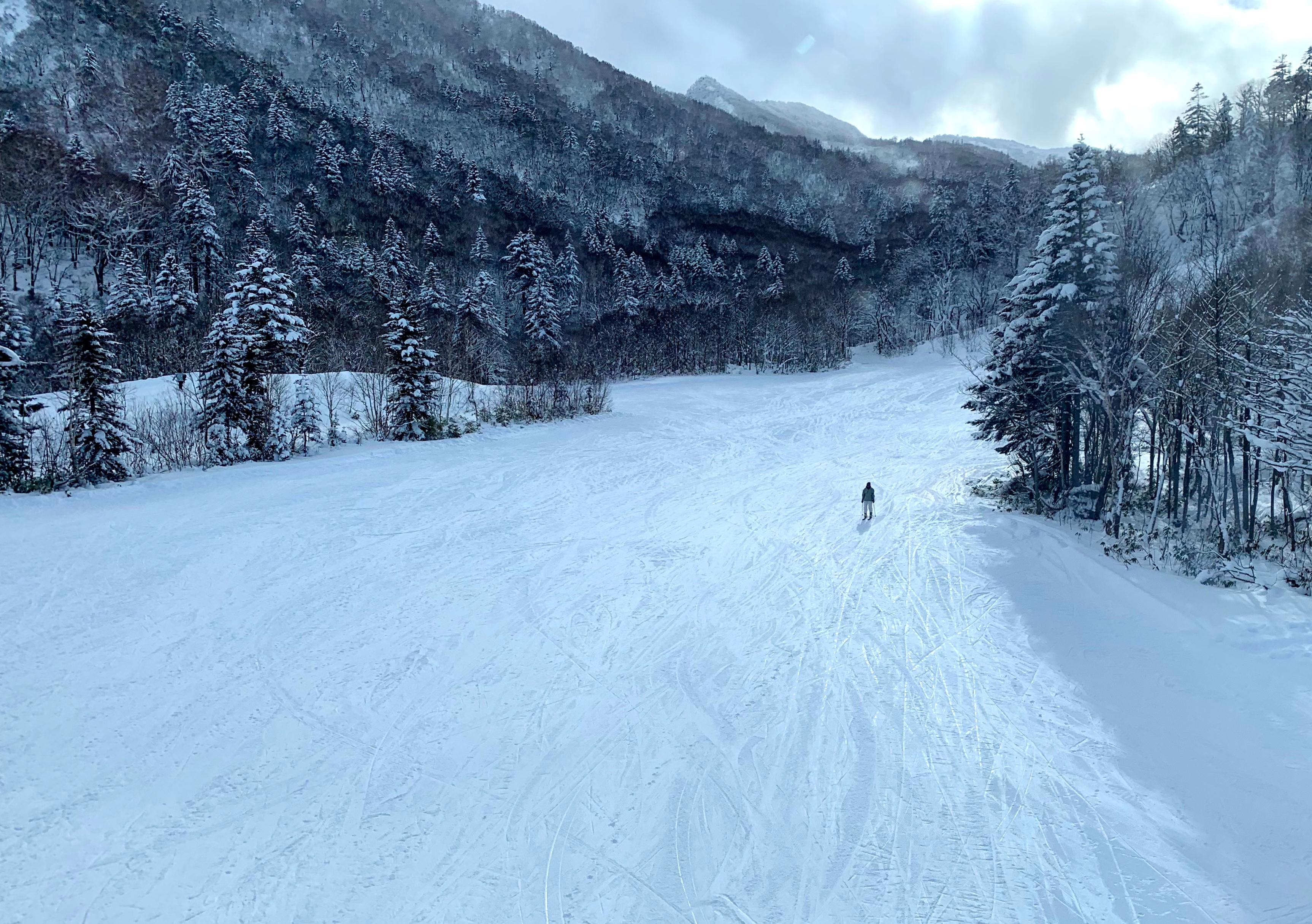 Sapporo, Hokkaido, Japan 2018 563