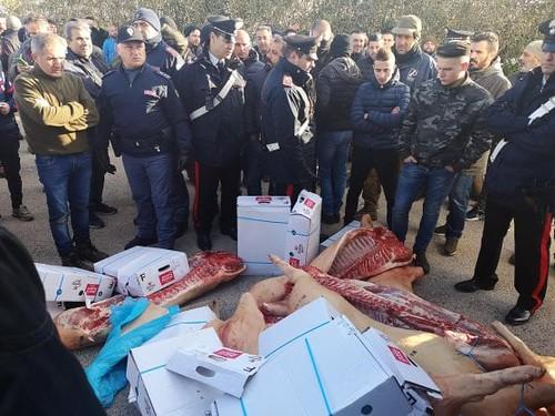 Sardegna: Protesta dei pastori contro il prezzo del latte.