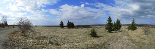 20110320 0207 239 Jakobus Weg Heide Weite Bäume Wolken_P01a