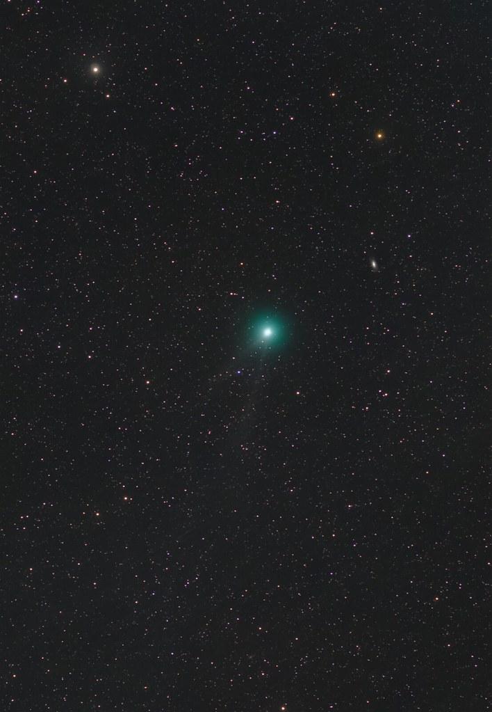 Comet Iwamoto (C/2018 Y1)