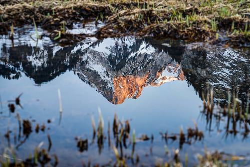 Spiegelung Spitzflue im Schwarzsee