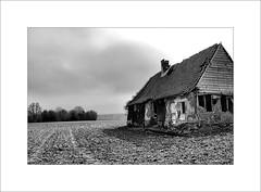 Ruine... - Photo of Linzeux