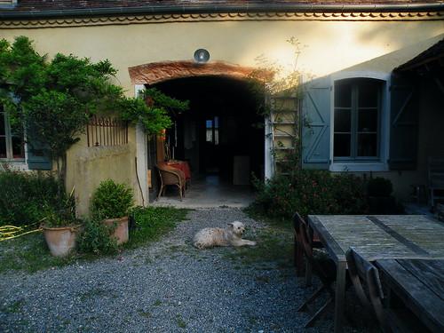 20090531 015 1110 Jakobus Maslacq Cambarrat Haus Durchgang Hund
