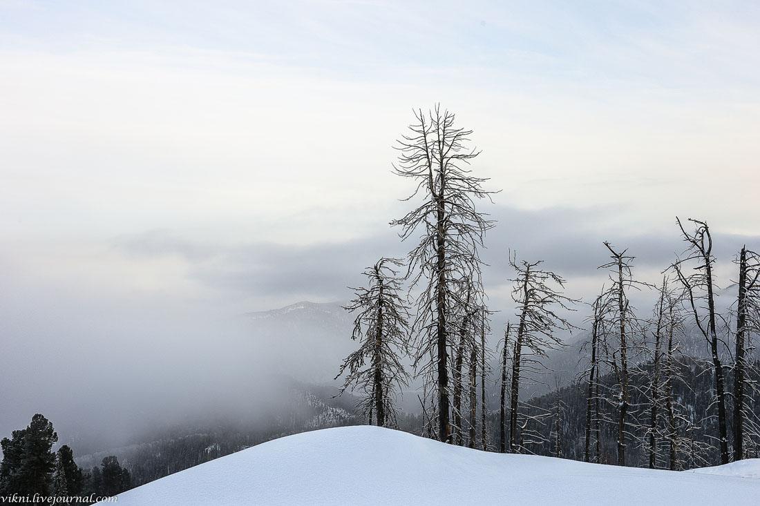 Гора Кокуя на Алтае.