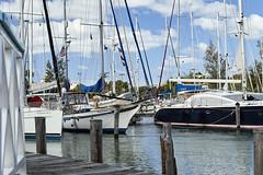 Jolly Harbour Marina