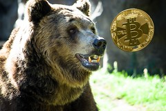Crypto Currencies are in a Bear Market