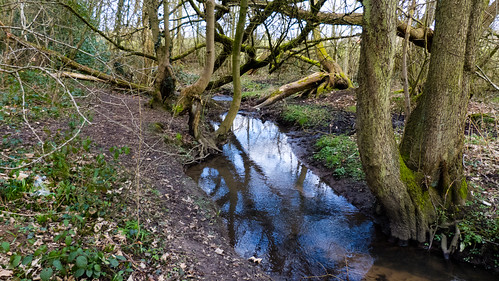 Berry brook, Northycote Farm