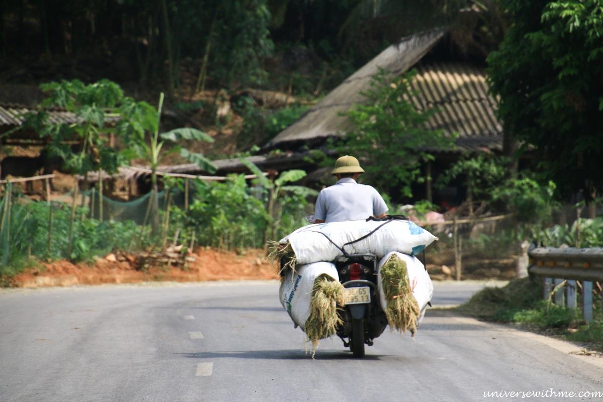 Vietnam_082
