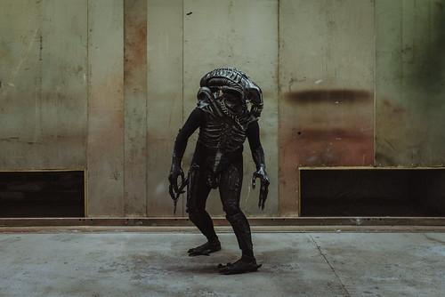 GFF19: Alien