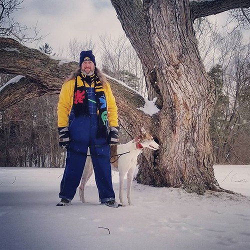 Adventurers! #Cane #dogsofinstagram #greyhound #greyhoundsofinstagram #KnoxFarm #eastaurora #wny #winter #snow #nature #hiking #overalls #dungarees #biboveralls #keyoveralls #overallsarelife