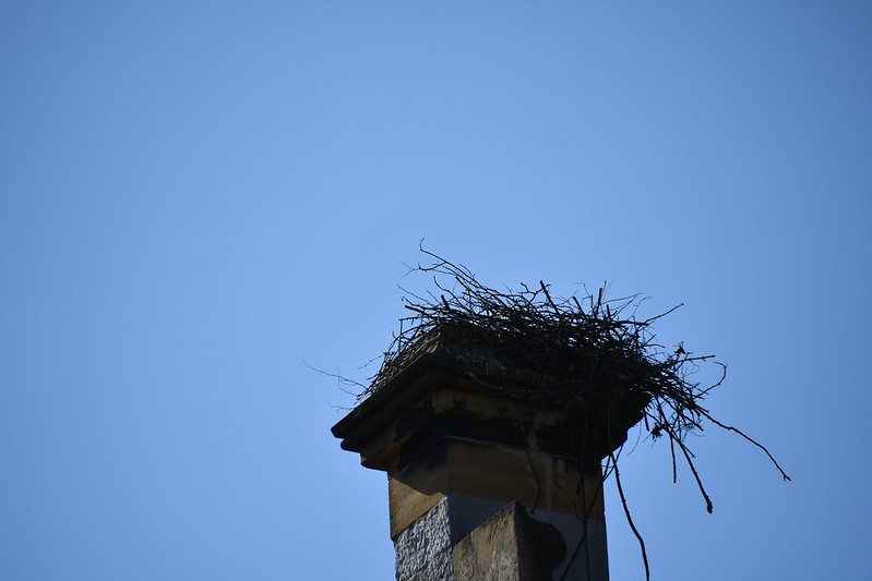 Stork Nest Consert Hall 30.03.2019