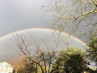 crazy rainbows today