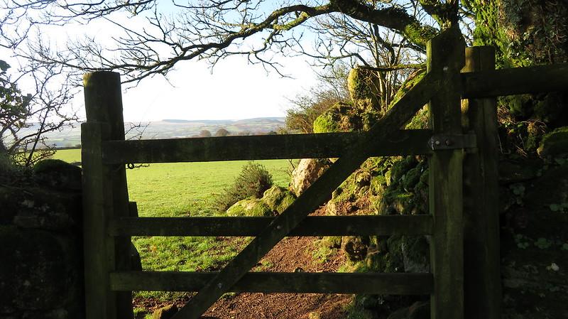 Gate onto Butterdon Down