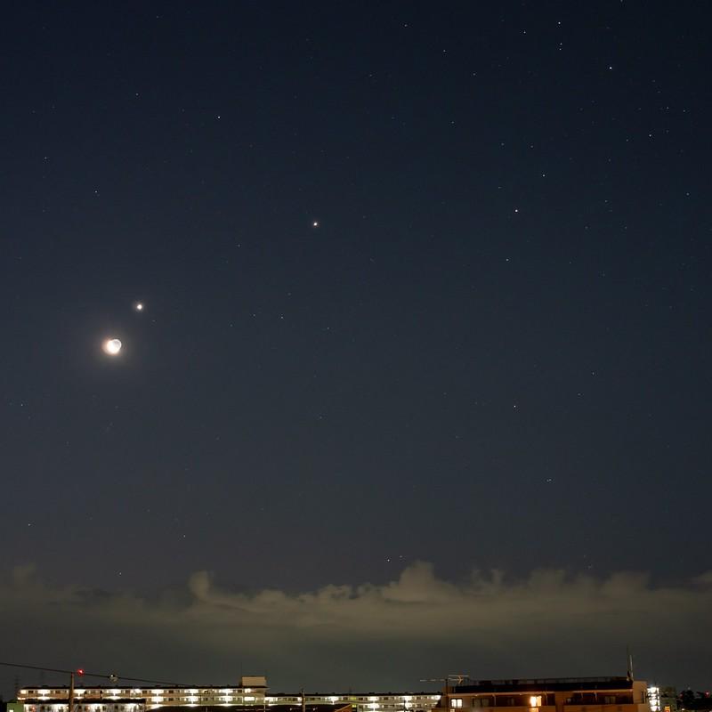 月、金星、木星、アンタレス (2019/2/1 05:36)