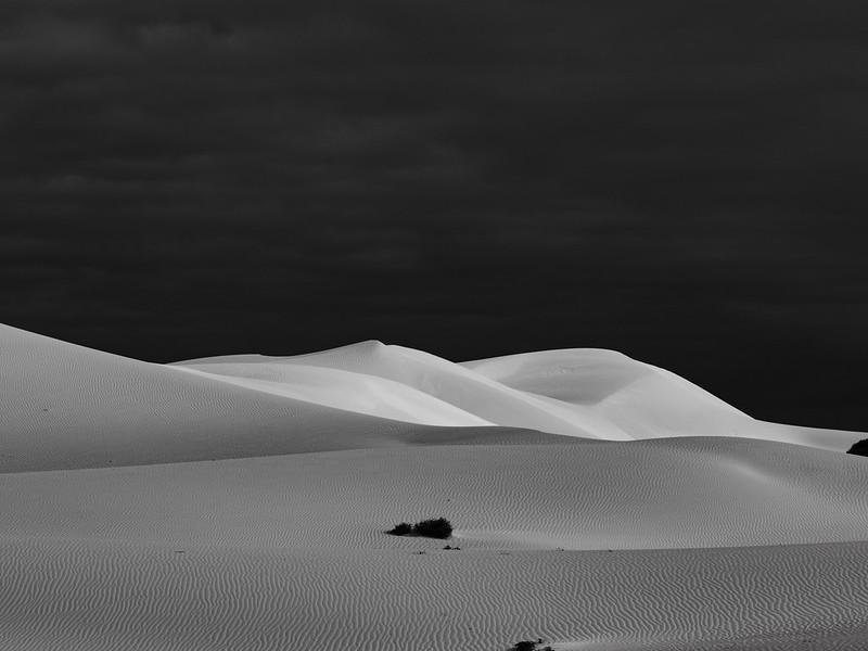 Bilbunya Dunes ( EUCLA, Australia )