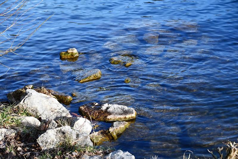 River Aare 23.02 (4)