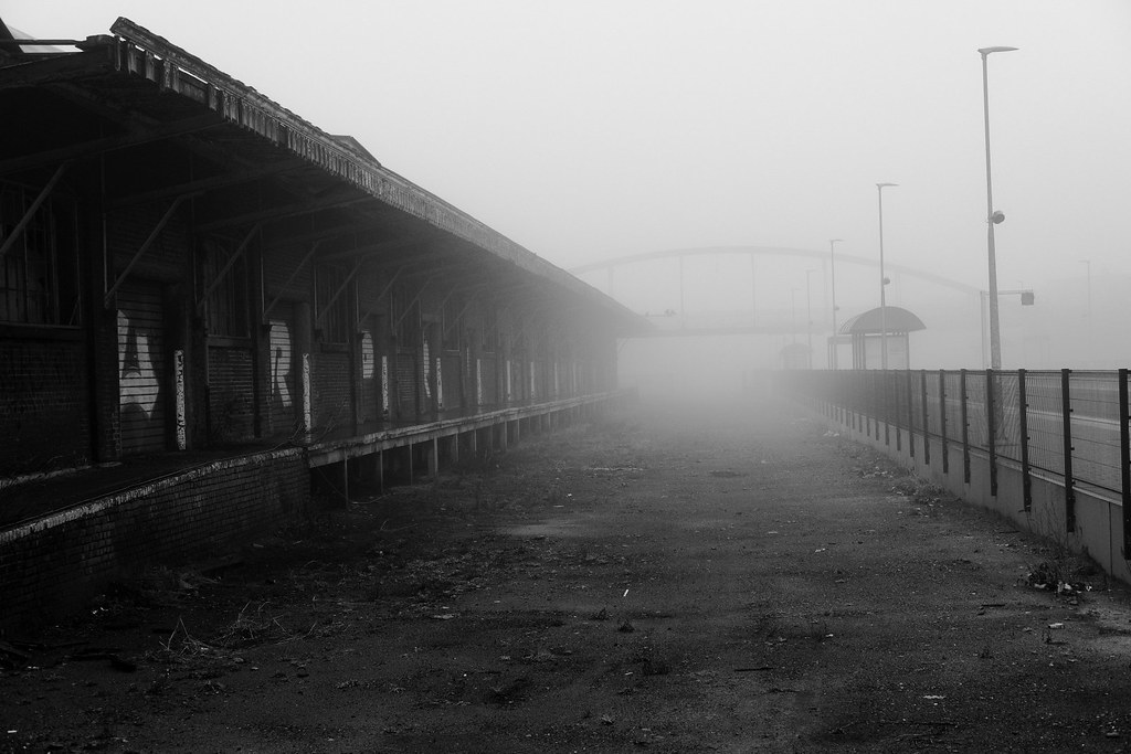 A misty world