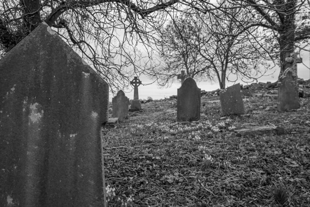 Kingston Old Churchyard V