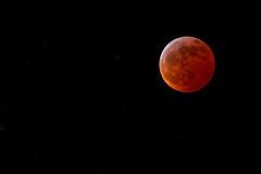 Lunar Eclipse of 2019