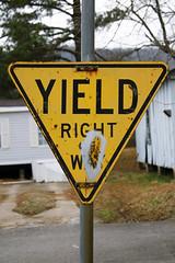 Yellow Yield Sign - Stevenson