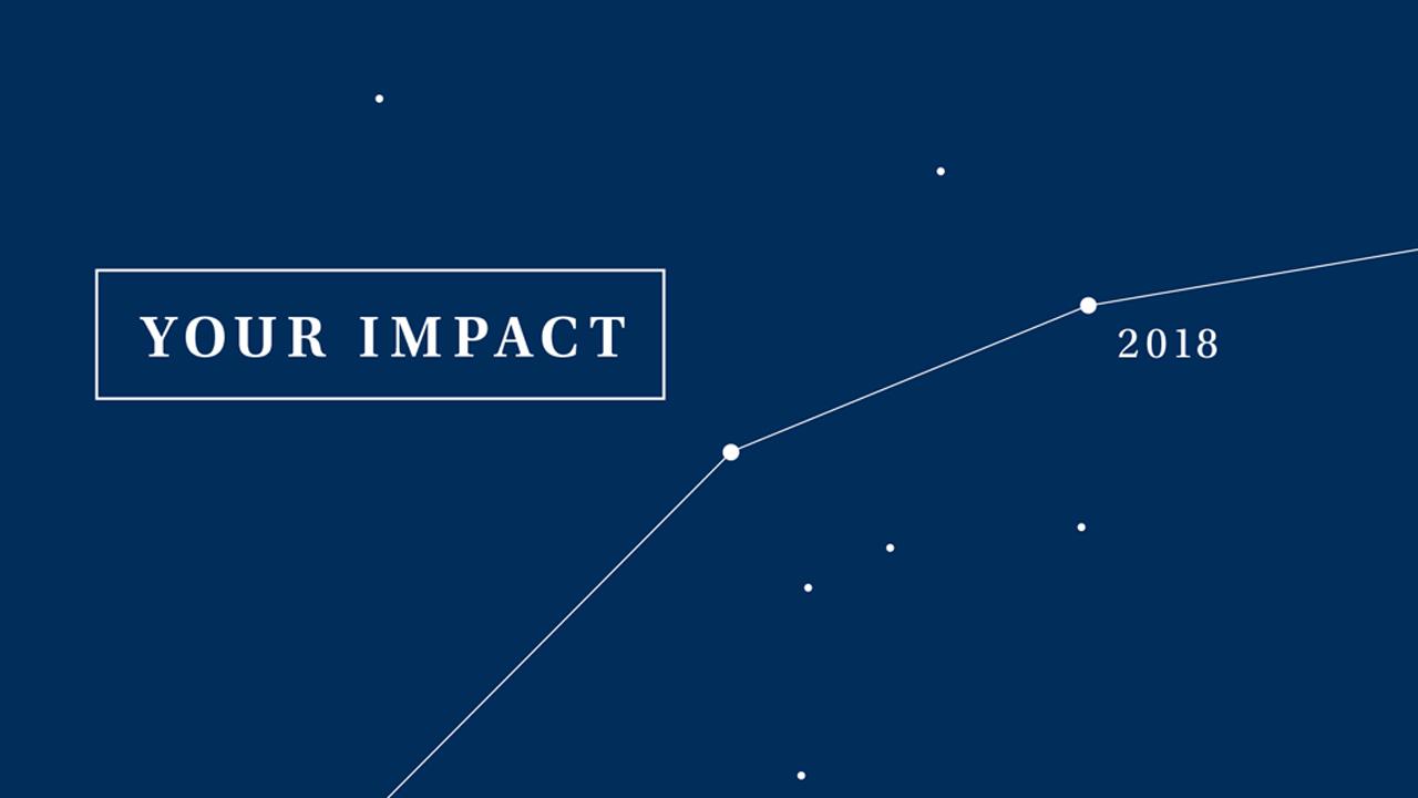 Impact Report 2008-18