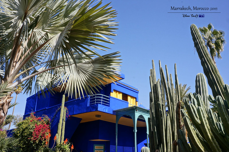 Morocco Marrakech Majorelle Garden 01