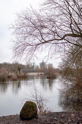 Ballastière (Hoenheim,France)-106