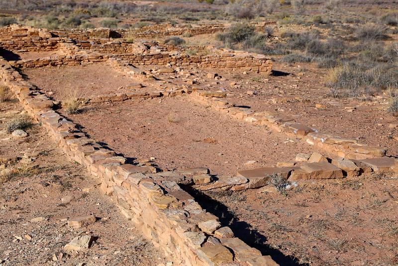 IMG_4140 Puerco Pueblo